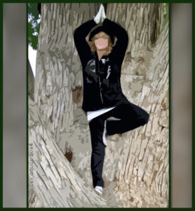 Tree Pose; in tree - Holley 2014