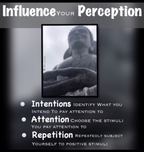 Influence Your Perception