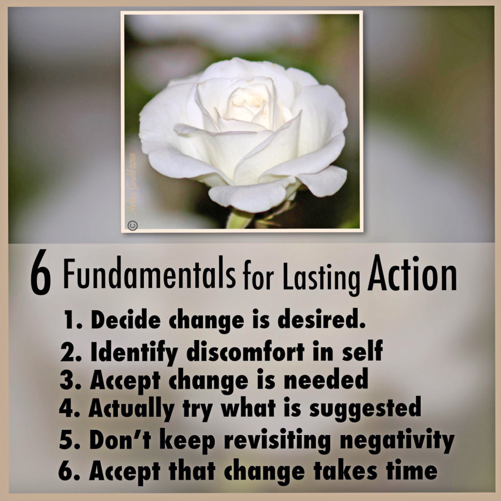 6 Fundamentals for Action; LwH4